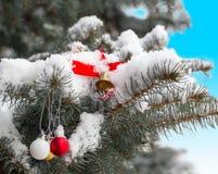 Bola de la Navidad en una rama de la picea Imágenes de archivo libres de regalías
