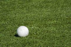 Bola de lacrosse en campo del césped. Imagen de archivo