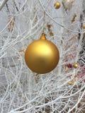 Bola de oro Imágenes de archivo libres de regalías