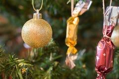 Bola de oro de la Navidad con los dulces que cuelgan en el árbol de navidad Imágenes de archivo libres de regalías