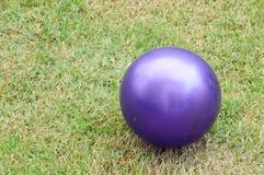 Bola de patio púrpura Foto de archivo libre de regalías