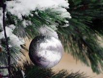 Bola de plata en la rama mullida del pino Imágenes de archivo libres de regalías