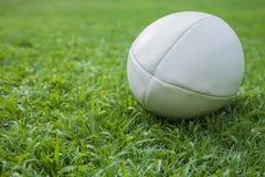 Bola de rugby Fotografia de Stock Royalty Free
