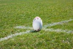 Bola de rugby que encontra-se na linha Imagens de Stock Royalty Free
