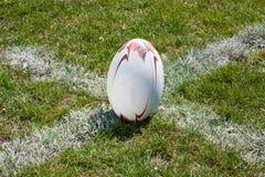 Bola de rugby que encontra-se na linha Imagem de Stock