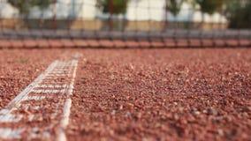Bola de tênis do rolamento. video estoque