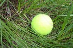 Bola de tênis na grama, Fotos de Stock Royalty Free