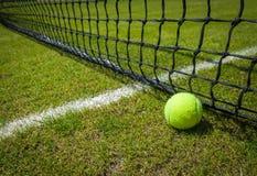 Bola de tênis Imagem de Stock