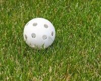 Bola de Wiffle en la hierba Foto de archivo libre de regalías