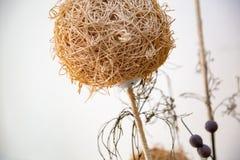 Bola decorativa de la paja para el interior Foto de archivo libre de regalías