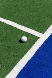 Bola del hockey Imagen de archivo libre de regalías