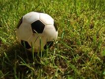 Bola del juguete Imagen de archivo libre de regalías