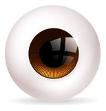 Bola del ojo Foto de archivo