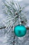 Bola del verde del juguete del Año Nuevo en árbol forestal Fotos de archivo