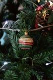 Bola do Natal Fotografia de Stock Royalty Free