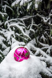 Bola do Natal Imagens de Stock