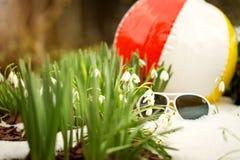 Bola e óculos de sol com snowdrops, mola do conceito Imagem de Stock Royalty Free