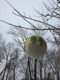 Bola e luz solar do Natal Foto de Stock Royalty Free
