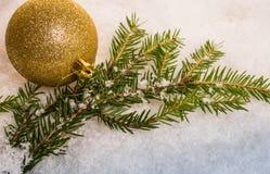 Bola e ramo brilhantes do Natal Imagens de Stock Royalty Free