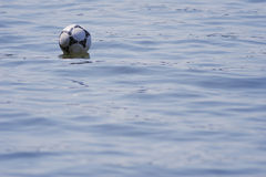 Bola en el agua. Fotos de archivo libres de regalías