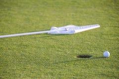Bola en el verde del campo de golf Fotos de archivo libres de regalías
