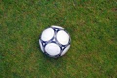 Bola en hierba de e Fotografía de archivo libre de regalías