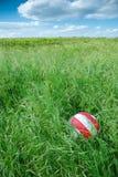 Bola en hierba en la comida campestre Fotos de archivo libres de regalías