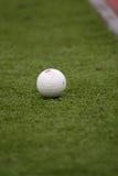 Bola en la hierba Imagenes de archivo