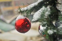 Bola en la nieve en el árbol de navidad Fotografía de archivo