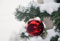 Bola en la nieve en el árbol de navidad Fotografía de archivo libre de regalías
