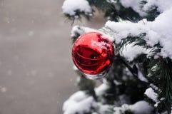 Bola en la nieve en el árbol de navidad Foto de archivo libre de regalías