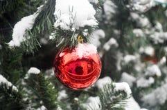 Bola en la nieve en el árbol de navidad Foto de archivo