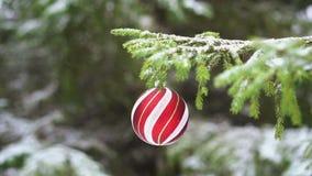Bola en la rama del abeto, cámara lenta de la Navidad almacen de video