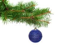 Bola en una ramificación del árbol de navidad, aislante del árbol de Navidad Fotos de archivo