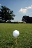 Bola en vertical verde Fotografía de archivo libre de regalías