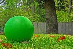 Bola en yarda Fotografía de archivo
