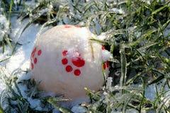 A bola entre as gramas geladas e cobertos de neve Fotos de Stock Royalty Free
