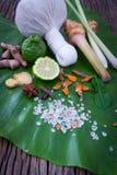 Bola erval da compressa para o tratamento tailandês da massagem e dos termas popular Foto de Stock