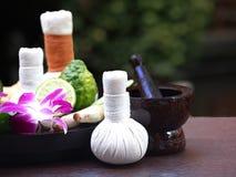 Bola herbaria de la compresa de los ingredientes naturales del balneario e ingredientes herbarios Fotografía de archivo libre de regalías