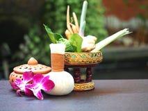 Bola herbaria de la compresa de los ingredientes naturales del balneario e ingredientes herbarios para la medicina alternativa y  Foto de archivo libre de regalías