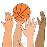 Bola masculina de la cesta del ataque de cuatro manos El jugar, el sostenerse, lanzando Bosquejo coloreado dibujado mano Aislado  stock de ilustración