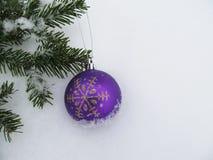 Bola púrpura en la nieve y una rama de árbol de navidad verde Foto de archivo