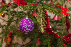 Bola púrpura en rama de árbol de navidad Imagenes de archivo