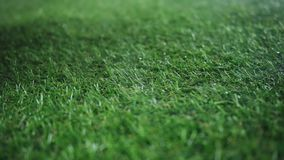 Bola para los rollos del fútbol en un cierre de la niebla para arriba en slowmo metrajes