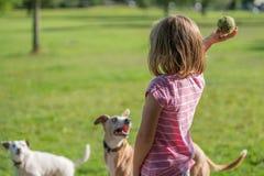 Bola que lanza de la muchacha para un perro Imágenes de archivo libres de regalías