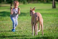 Bola que lanza del muchacho para un perro Imagen de archivo libre de regalías