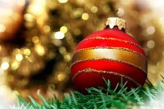 Bola roja de la decoración de la Navidad con el pino Foto de archivo libre de regalías
