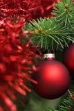 Bola roja de la Navidad en árbol foto de archivo