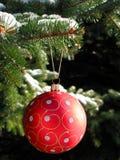 Bola roja de la Navidad en árbol de abeto fotografía de archivo