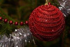 Bola roja de la Navidad en el primer del árbol Imagen de archivo libre de regalías